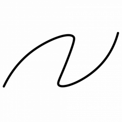 AlterNumeris